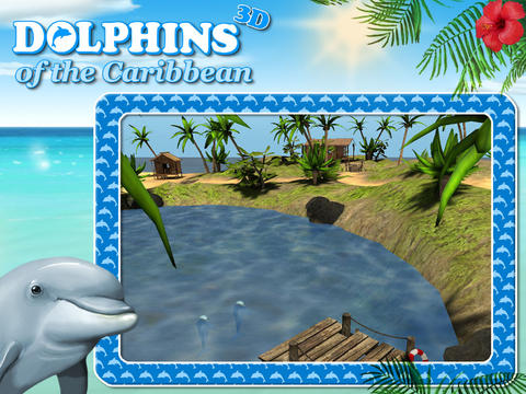 Dolphins of the Caribbean