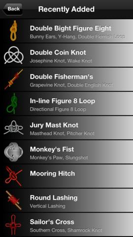 Knots 3D 1