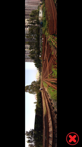 Panorama 360 Camera 3
