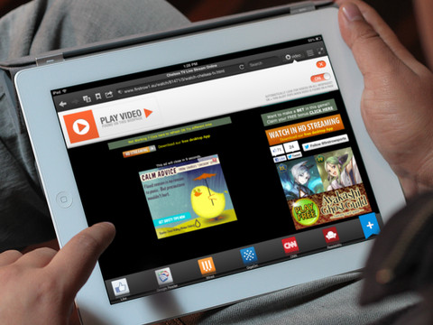 Skyfire Web Browser for iPad – The Flash Video Browser 1
